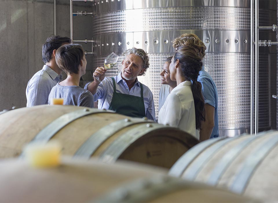 People visiting a winery for wine tourism within the tourism offer between Burgos and La Rioja